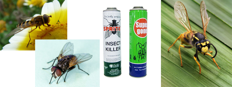 fly spray can